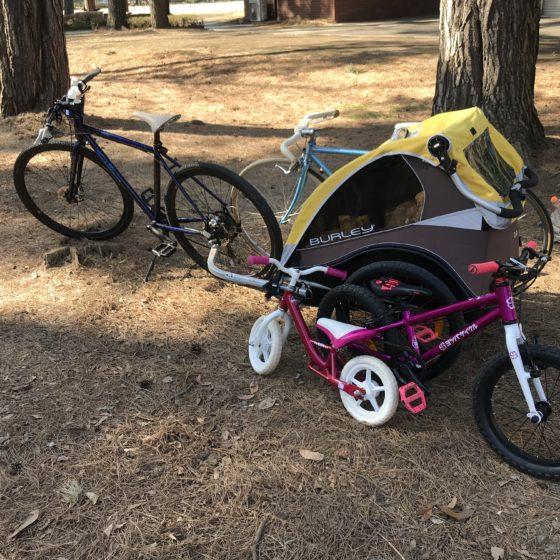 BURLE(バーレー)チャイルドトレーラー 自転車用ベビーカー試乗出来ます
